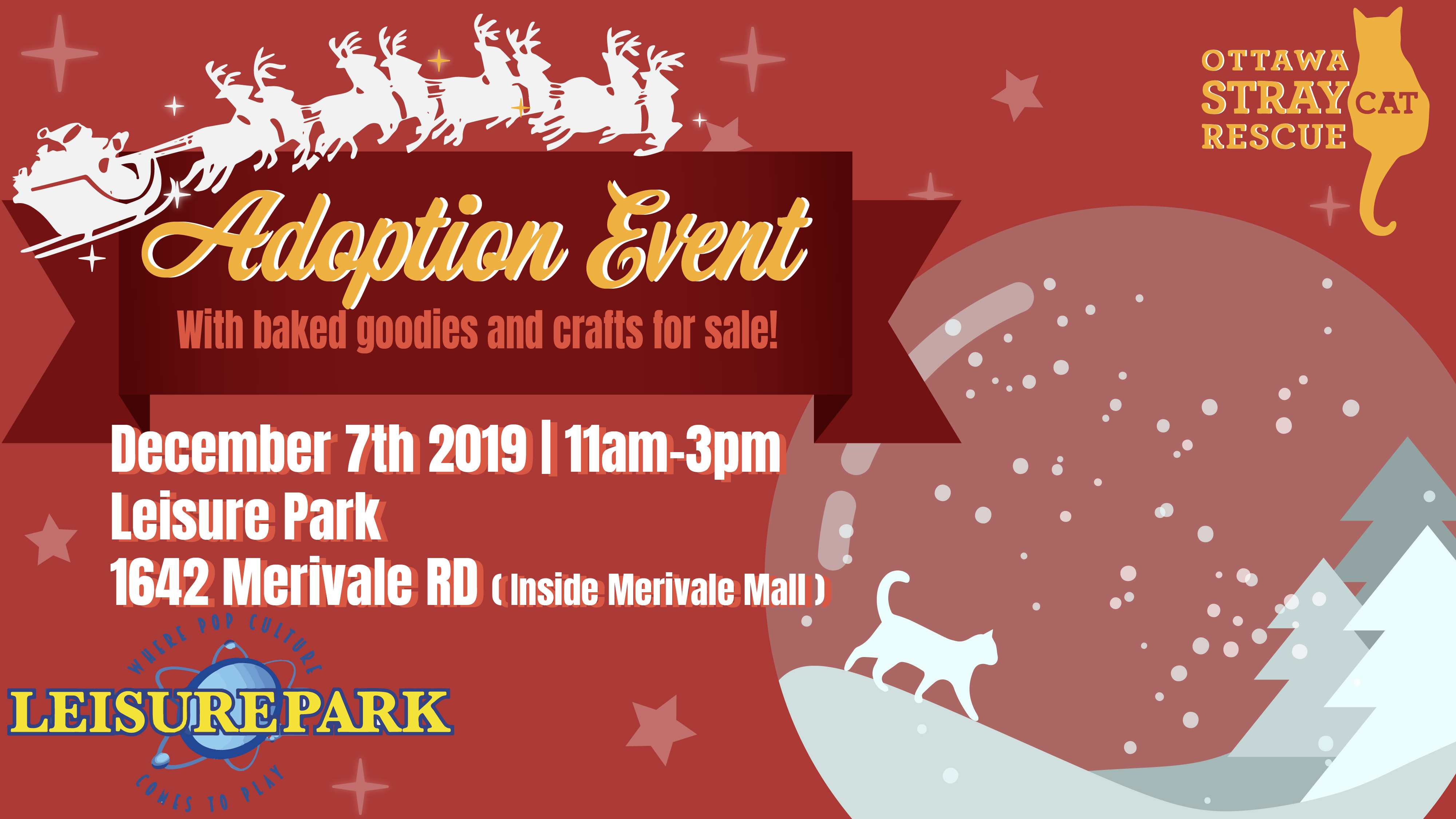 Ottawa Stray Cat Rescue Holiday Adoption Event