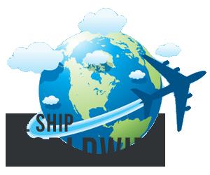 worldwide shipping ile ilgili görsel sonucu